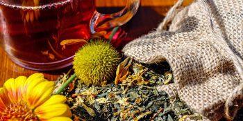 Domowe leczenie ziołami