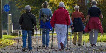 Bydgoscy seniorzy uczą aktywności