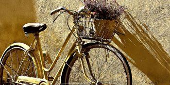 Czy droższy rower znaczy lepszy