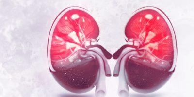 Jak odżywiać się w przewlekłej chorobie nerek