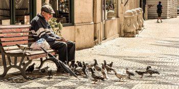 Pomysł na emerytury obywatelskie