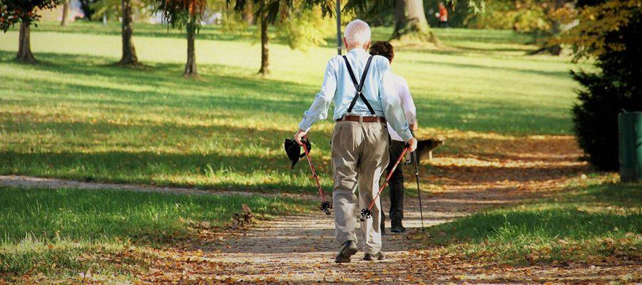 Zajęcia sportowe dla Seniorów