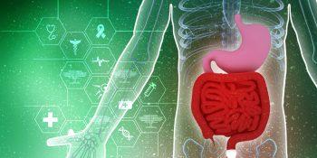 Fizjologiczne procesy starzenia się przewodu pokarmowego