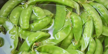 Fasolka szparagowa - smaczna, zdrowa, a wciąż niedoceniana