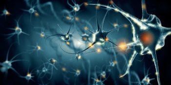 Starzenie się układu nerwowego