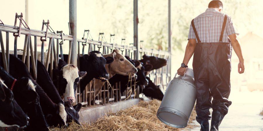 Ubezpieczenie społeczne rolników część 2