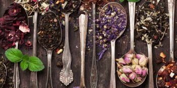 Rodzaje i właściwości herbaty