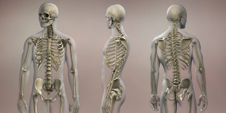 Osteoporoza jak choroba cywilizacyjna